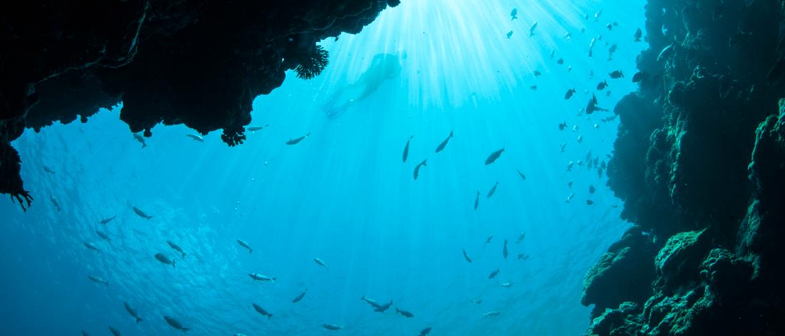 UnderwaterDiving1100x472